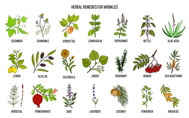 Best herbal remedies for wrinkles