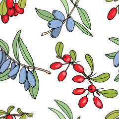 Hand drawn berries pattern