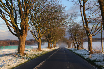 Deutsche Alleenstrasse, Rügen, Winter
