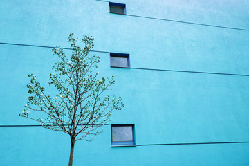 Huge blue wall on modern building with two windows and lines. Reflections in windows. Copy space