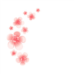 Pink flowers isolated on White background. Apple-tree flowers. Cherry blossom. Vector
