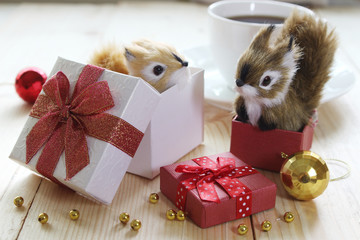 Two Cute squirrels are play on gift boxs, Christmas concept.