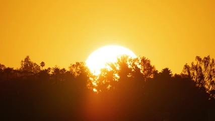 Fotobehang - Sunrise sun rising behind silhouettes of trees. 4K UHD timelapse.