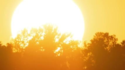 Fotobehang - Sunset sun timelapse