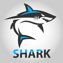 vector shark icons