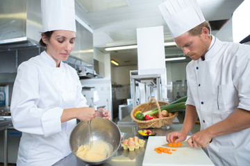 two chefs garnishing meal on counter in commercial kitchen