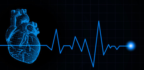 Blue human heart illustration with heart rate pulse