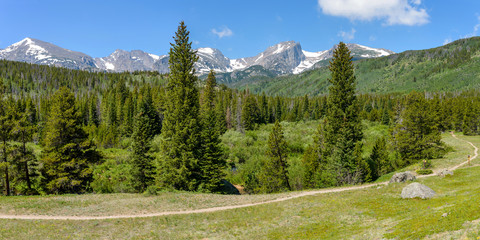 Summer Mountains - A panoramic summer view of a hiking path winding through dense evergreen forest towards snow-capped high mountain range in Rocky Mountain National Park, Estes Park, Colorado, USA.