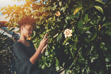Young cute Brazilian female with curly afro hair is taking picture of bud in garden using her cellphone; sweet black girl is using camera of her smartphone to take photo of flower in city public park