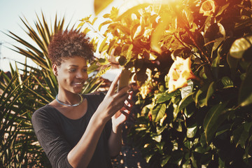 Smiling young African American lady with curly afro hair is taking picture or video via her cellphone for social network stories of beautiful flower buds on sunny summer day in the garden or city park