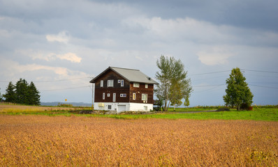 A wooden house on the field