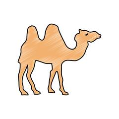 Camel cartoon silhouette