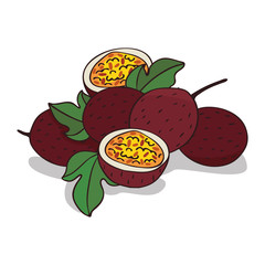 Isolate ripe passion fruit on white background. Close up clipart with shadow in flat realistic cartoon style. Hand drawn icon