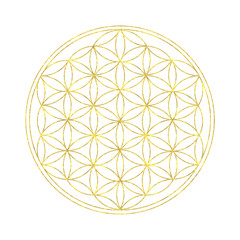 Flower of life - spiritual symbol with white background