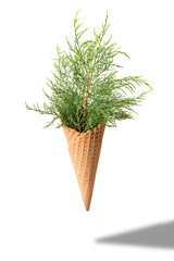Ice cream cone with fir branches on white background. Minimal style. Holiday concept.