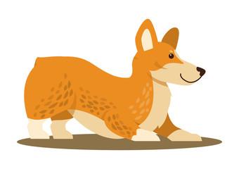Dog of Playful Mood, Icon Vector Illustration