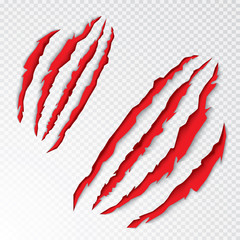 Animal Claws Scratching. Vector Illustration.