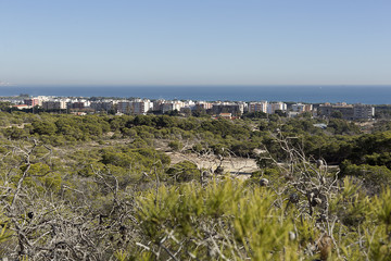 Skyline of the town of La Marina in the municipality of Elche, province of Alicante