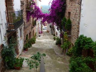 Villafamés. Pueblo de la Comunidad Valenciana, en España. Situado en la provincia de Castellón, en la comarca de la Plana Alta