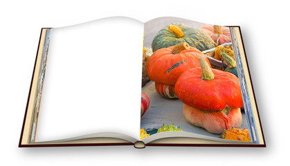 Learn to cook with pumpkins cookbook - 3D render concept image of an opened photo book isolated on white background - Image with copy space