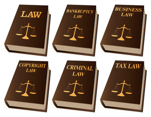 Law Books is an illustration of six law books used by lawyers and judges. They include books on law, bankruptcy law, business law, copyright law, criminal law, and tax law.
