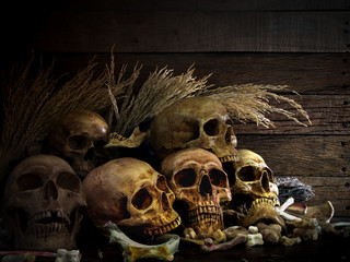 Still life art image of humen skulls and pile of bone with ear of paddy on a wooden table and wooden background in dim light for halloween night
