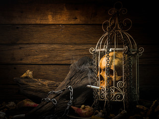 Still life art image of humen skull smoking cigarette in white cage with metal chain and old woods on wooden table and background with dim light in concept for stop smoking campaign
