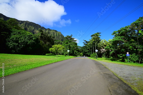 Hoomaluhia Botanical Garden Stock Photo And Royalty Free Images