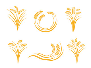 wheat seed food cereal brew vector logo design