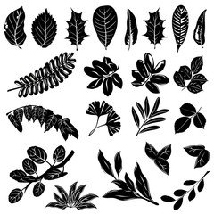 Leaves silhouettes of trees and bushes. Set of hand drawn vector illustrations on white background.