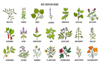Best sedatives herbs