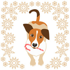 Cute little dog with candy cane. Vector illustration on white background.