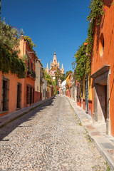 San Miguel de Allende Street View With Cathedral In Background