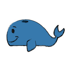Whale cartoon isolated icon vector illustration graphic design