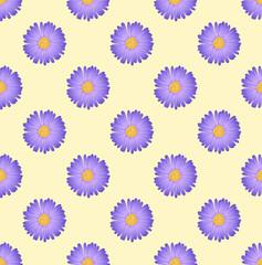 Purple Aster Flower on Ivory Beige Background
