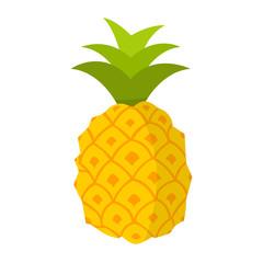 Ananas Flat Design Icon
