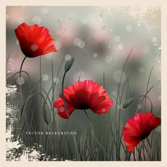 Vector vintage background or card. Meadow with poppies and grass. Imitation black and white old photos. Perfect for announcements, invitations and greetings. Remembrance Day