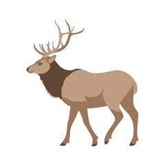 big deer vector illustration flat style  profile