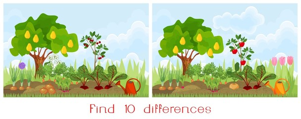 Find ten differences visual pictures. A game for children. Garden in the summer