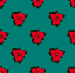 Red Poinsettia Seamless on Green Teal Background