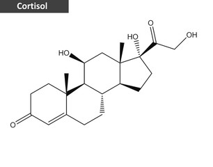 Molecular structure of hormone Cortisol