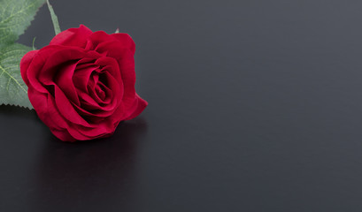 Close up of a single red rose on stone background