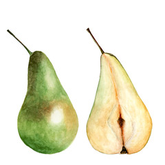 Whole pear and cut isolated on white. Watercolor illustration