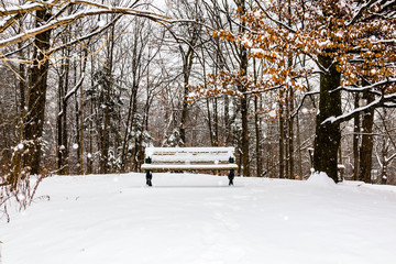 Bench in a snowy winter day