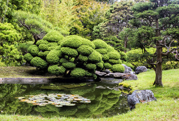 Japanese Tea Garden, Golden Gate Park, San Francisco, California, CA, USA