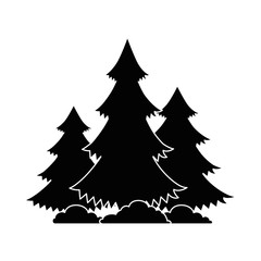 pines trees plants with grass vector illustration design