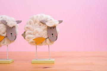 funny sheep in front of pink background