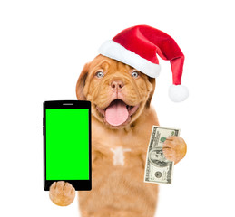 Funny puppy in red christmas hat with smartphone and dollars. Isolated on white background