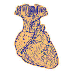Realistic human heart drawing. Tattoo art, dot work design for Valentine day. Anatomical heart element flesh tattoo concept.