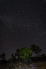 Night photography in the Natural Area of Granadilla. Extremadura. Spain.